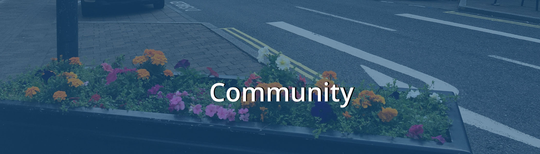 Bearsden Loves Local Community